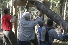 Hoisting logs onto the sawing frame