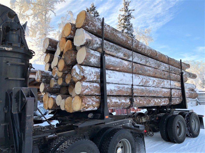 Logs-on-a-truck-ready-for-transport-to-Fairbanks.