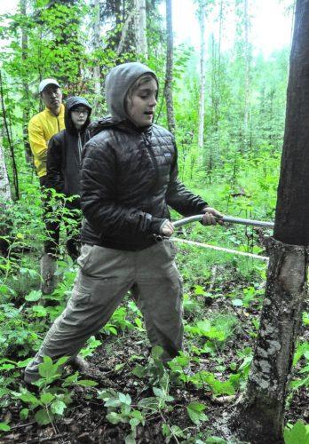 Week in the Woods