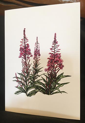 Brandy Klindworth Fireweed card