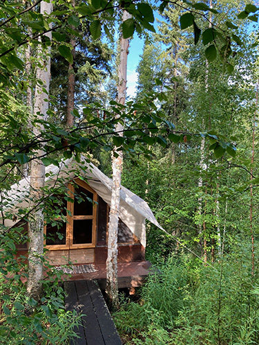 Boreal Forest School